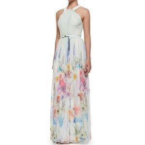 Ted Baker London - Beula Floral Pleated Maxi Dress
